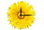 zegar kawiat 2